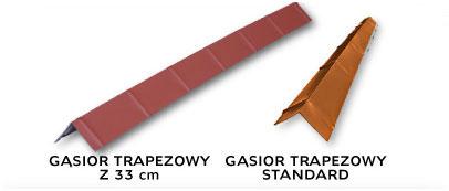Gąsior trapezowy